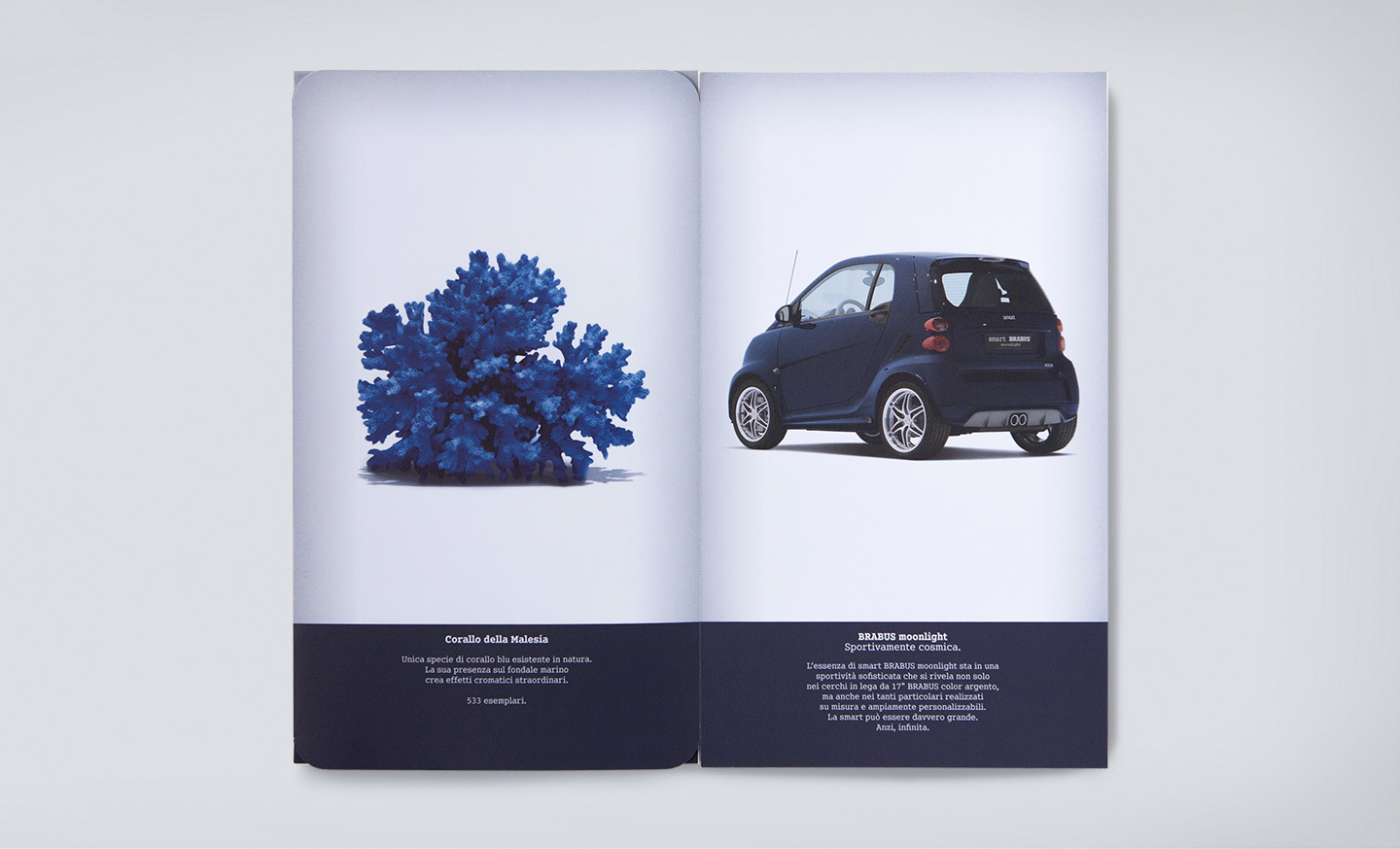 smart BRABUS direct mail